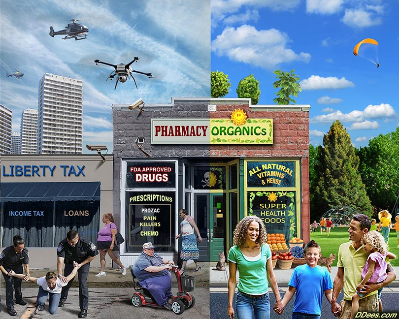 Store by David Dees