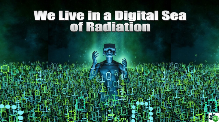 Sea of radiation